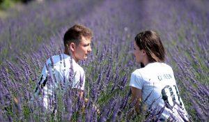 ラベンダー畑で会話するカップル