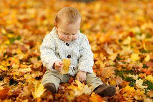 落ち葉の上でお座りしている赤ちゃん