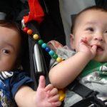 ベビーカーに乗った二人の赤ちゃん