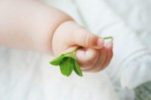 葉っぱを握る赤ちゃんの手